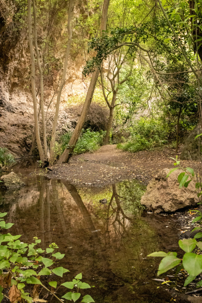 Barranco de Azuaje - Gran Canaria