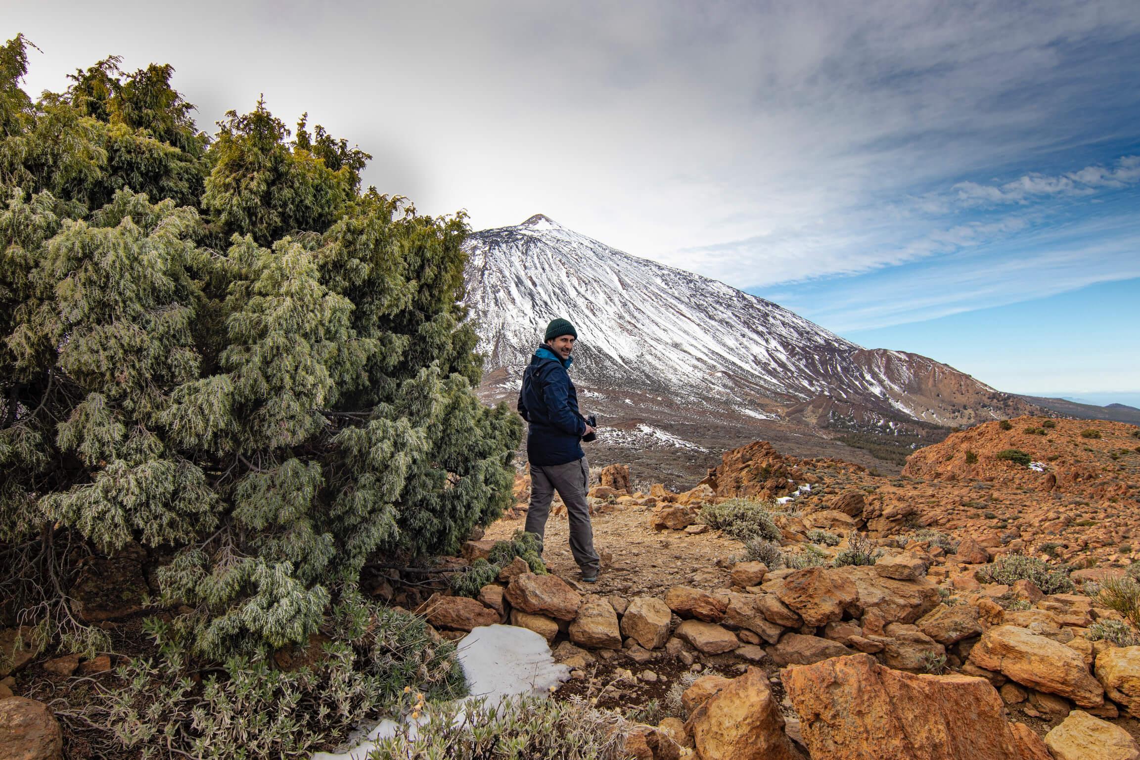 Subida a La Fortaleza del Teide y cedros