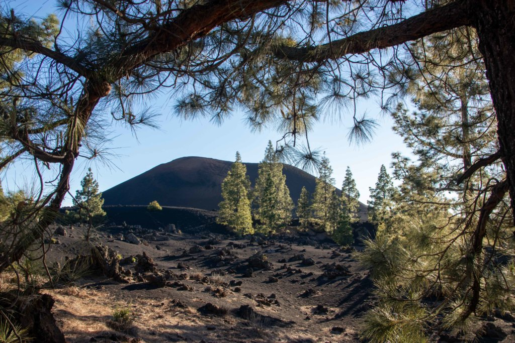 Ruta circular Volcán Chinyero, Tenerife