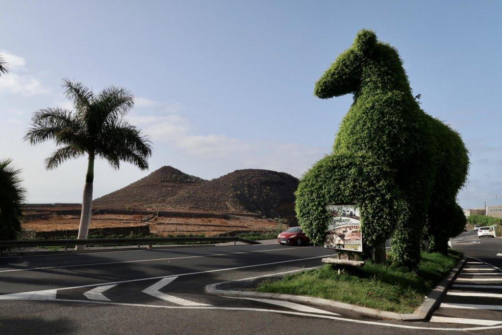Montaña de los Erales, Tenerife.